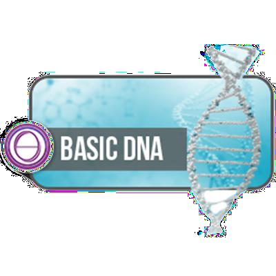 Basis DNA Seminar